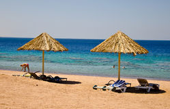 Relax on the beach. People having fun during the holidays on the coast of the Red Sea in Aqaba, Jordan Royalty Free Stock Image