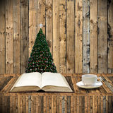 Relax with book in Christmas day Stock Photos