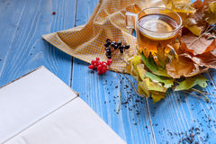 Relax with book and tea conception. new book. bestseller. Still cold weather. Hot tea, autumn leaves, an interesting book. All you need on a cold day. book with Royalty Free Stock Images