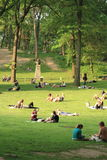 Relax in Central Park - summer Royalty Free Stock Image
