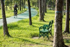 Relax chair in the park near bicycle lane and running path in morning. People execise concept. Biker and runners in the garden. royalty free stock photo