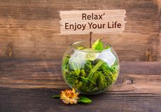 Relax enjoy your life. Text on wood sign board with flower and leafs on wood Stock Photography