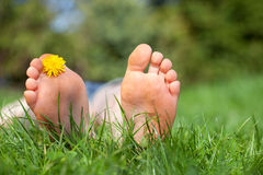 Relax in the garden, f Stock Photography