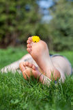 Relax in the garden, f Royalty Free Stock Image