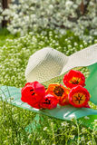 Relax in the garden in a spring day. Deckchair, hat and bouquet of tulips in the spring garden stock images