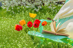 Relax in the garden in a sunny spring day. Relax in the garden with a book in a sunny spring day royalty free stock photo