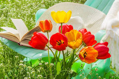 Relax in the garden on a sunny spring day Royalty Free Stock Photo