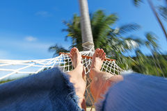 Relax in hammock Stock Image