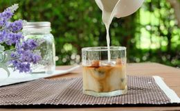 Relax with Ice caffe latte in the garden. Making ice cafe latte by pouring milk into espresso ice cube Stock Image