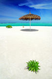 Relax in the Maldives Royalty Free Stock Images