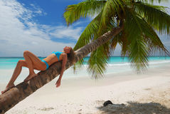 Relax on palm Stock Photos