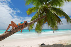 Relax on palm Stock Photography