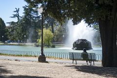 Relax in the park. Woman sitting on a bench in the municipal park observes a gushing fountain in the municipal lake of Florence stock photos