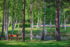 Relax place near pond in summer park Royalty Free Stock Photography