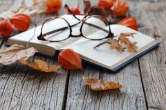 Relax seasoning education. Fall leaf and book on wooden table Stock Photo