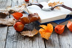 Relax seasoning education. Fall leaf and book on wooden table Royalty Free Stock Photo