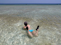Relax in the shallow sea. Red Sea. Egypt Stock Images