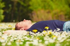 Relax in sunny day Royalty Free Stock Image