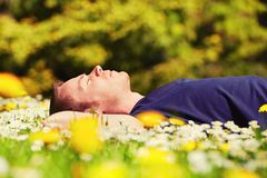 Relax in sunny day Stock Images