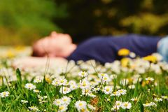 Relax in sunny day Stock Photography