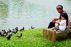 Relax time. Lumpini Park, Bangkok, Thailand : September 10 2012 : Unidentified old man and child feeding  pigeons at Lumpini Park. Lumphini Park is a park in Stock Image
