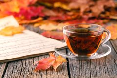 Relax Time In Fall Season. Red Maple Leaf On Table Royalty Free Stock Photos