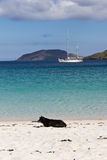 Relax on Vatersay beach Stock Photography