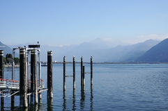 Relax view of jetty, dock with birds in blue lake summer vacatio Stock Photos