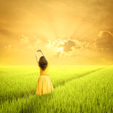 Relax Woman in green rice fields and sunset in the morning Royalty Free Stock Images