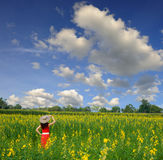 Relax Woman in Yellow flower field and blue sky Royalty Free Stock Images