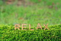 Relax word letters on green moss. Relax word wooden letters on green moss and blur green land background royalty free stock photos