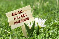 Relax you are awesome. On wooden sign in garden with white spring flower stock photo