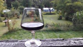 Relaxamento com um vidro do vinho tinto Foto de Stock Royalty Free