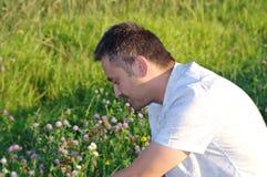 Relaxamento em um prado Fotos de Stock