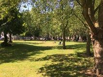 Relaxamento no parque Foto de Stock Royalty Free