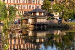 Relaxando por um lago em Nara, Japão foto de stock royalty free