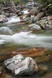 Relaxation. Large stone in the mountain river Royalty Free Stock Image