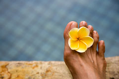 Relaxation Royalty Free Stock Photo