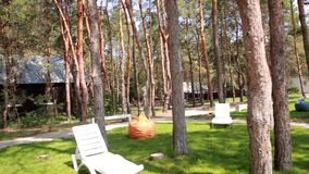 Relaxation area in the forest stock footage