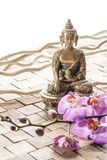 Relaxation at the beauty spa. Buddha for zen pampering with natural background Stock Photos