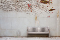 Relaxation with bench Stock Photography