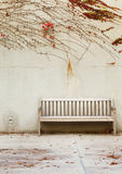 Relaxation with bench in garden Royalty Free Stock Images
