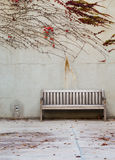 Relaxation with bench in garden Stock Images