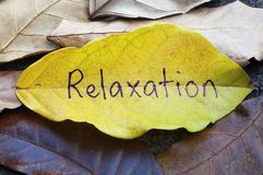 Relaxation written on leaf royalty free stock photography