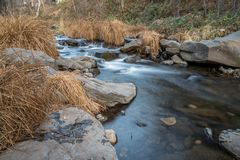 Relaxation by the creek Royalty Free Stock Photos