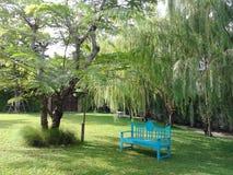 Relaxation en parc naturel photographie stock