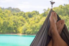 Relaxation on the hammock Royalty Free Stock Image