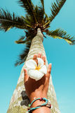 Relaxation and Leisure in summer Stock Images