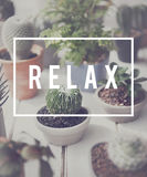Relaxation Relax Chill Out Peace Resting Serenity Concept Stock Photo