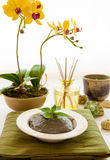 Relaxation Spa Concept Royalty Free Stock Photography